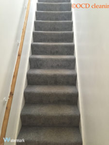 carpet-clean-before